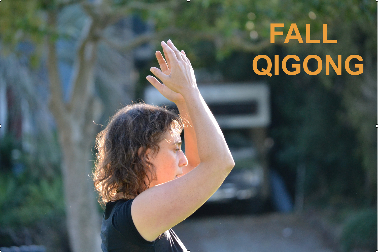 Graphic Fall Qigong